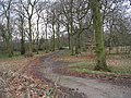 Bierley Hall Woods - Bierley Lane - geograph.org.uk - 701264.jpg