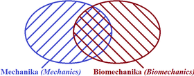 mechanika, biomechanika Vennův diagram