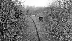 Bishopsbourne - Remains in 1963 of Bishopsbourne railway station which closed in 1940