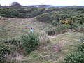 Blakeney Esker quarry - geograph.org.uk - 645093.jpg
