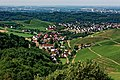 Blick vom Schloss Staufenberg auf die Weinlandschaft rund um Durbach. 08.jpg