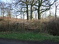 Bodens Sticks - geograph.org.uk - 318456.jpg