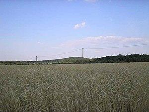 Battle of Borowa Góra - Image: Borowa hill 2006