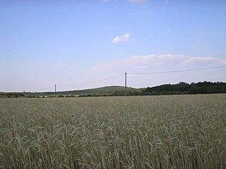 Battle of Borowa Góra