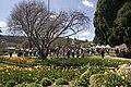 Bowral NSW 2576, Australia - panoramio (7).jpg