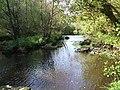 Brannagh River - geograph.org.uk - 423292.jpg