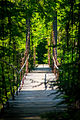 Bridge to Whitehouse, Wells - 2.jpg
