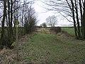 Bridleway to Hasholme - geograph.org.uk - 129228.jpg
