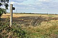 Bridleway to Watton - geograph.org.uk - 1516567.jpg