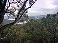 Brooklyn NSW 2083, Australia - panoramio.jpg