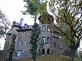 Burg Ockenfels von Osten.jpg