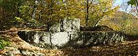 Burgruine Granegg.jpg