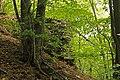 Burgruine Steinegg - Mauerreste im südöstlichen Teil der Ruine.jpg