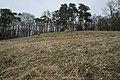 Burgstall Bildhausen-9407.jpg