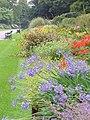 Bute Park, Flower Beds - geograph.org.uk - 1422368.jpg