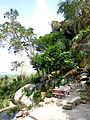 Cảnh trên núi Trà Sư 1.jpg