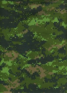 228px-CADPAT_digital_camouflage_pattern_
