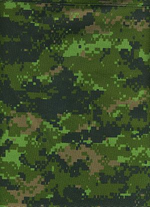 Military camouflage - The Canadian Forces were the first army to issue pixellated digital camouflage for all units with their disruptively patterned CADPAT.