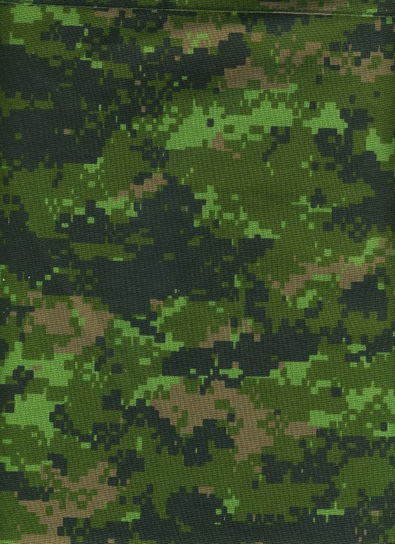 cadpat camo submited images - photo #20