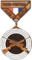 CMP Junior Excellence-in-Competition Air Rifle Badges.png