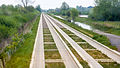 Cambridge Guided Busway 2.jpg