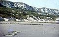 Capel Cliffs and the Warren 1964 - geograph.org.uk - 64712.jpg