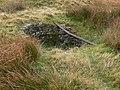 Capped mine on Axe Edge Moor - geograph.org.uk - 600460.jpg