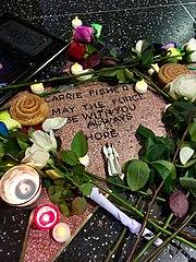Doni e tributi lasciati dai fan sulla stella di Carrie Fisher il giorno dopo la sua morte