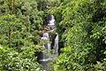 Catarata Rara Avis, Sarapiquí, Heredia, Costa Rica.jpg