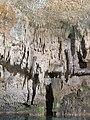 Cenote Choo-Ha - Cobá-2.jpg
