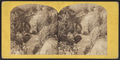 Central Park, in the Ramble, from Robert N. Dennis collection of stereoscopic views 2.png