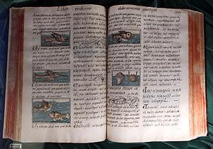 Florentine Codex - Historia general de las cosas de Nueva España (original from the Biblioteca Medicea Laurenziana).