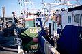Chalutiers de pêche côtière (6).jpg