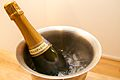 Champagne cooler - 2013-12-26 at 19-32-24.jpg