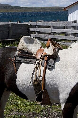 Girth (tack) - A girth on a Chilean saddle