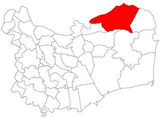 Chilia Veche Commune in Tulcea, Romania
