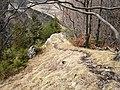 Chodník na Hoblík - panoramio.jpg