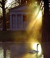 "Cincinnati - Spring Grove Cemetery & Arboretum ""Warm Light On Swan"" (4516271877).jpg"