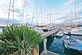 Circolo Nautico NIC Porto di Catania Sicilia Italy Italia - Creative Commons by gnuckx - panoramio (3).jpg
