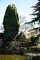 City of London Cemetery Memorial Gardens pond 02.jpg