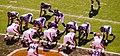 Cleveland Browns vs. Baltimore Ravens (15169152807).jpg