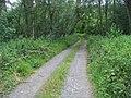 Clifton Heath - geograph.org.uk - 1385049.jpg