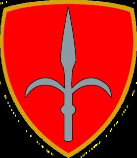 "Mechanized Brigade ""Trieste"""