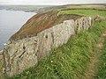 Coast path near Port Gaverne - geograph.org.uk - 1579512.jpg