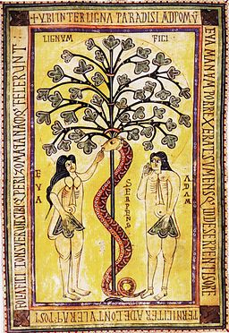 Codex Aemilianensis