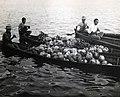 Collectie NMvWereldculturen, TM-60042223, Foto- Schippers vervoeren kokosnoten, bananen en 'laboe' (stoofvrucht) op de Kapuas-rivier, 1900-1940.jpg
