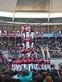 Concurs de Castells 2008 P1220456.JPG