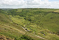 Coombe Valley above Duckpool.jpg