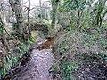 Cornish brook 1 - geograph.org.uk - 1324424.jpg
