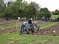 County Cavan Ploughing Championships 2009 at Gowna - geograph.org.uk - 1303508.jpg